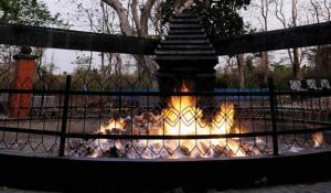 lidah-api-abadi-kayangan-api_kidnesiathumb630x368